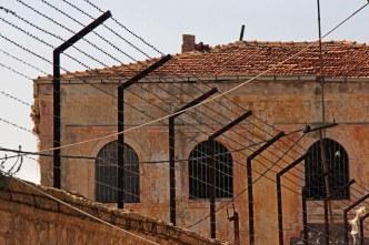 agah öncül-sinop cezaevi (10)